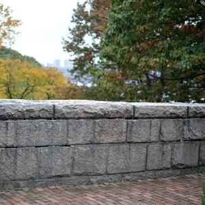 Si no fue este, fue un muro igual.